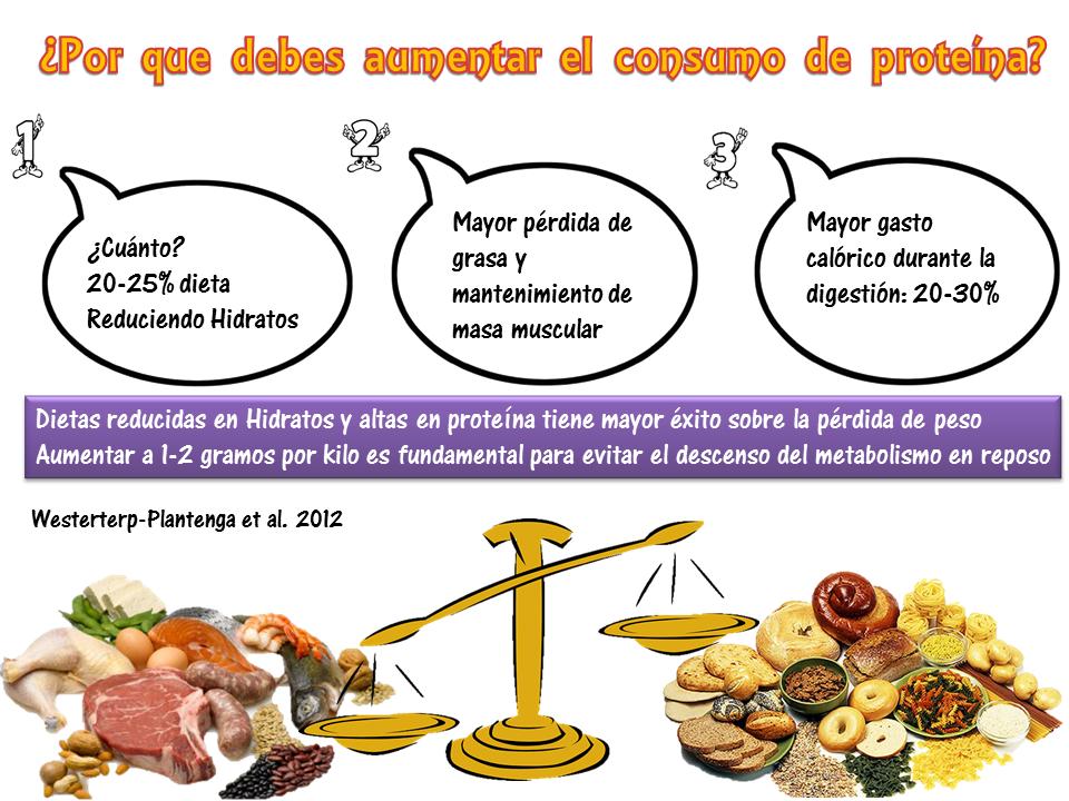 proteinas perdida de peso